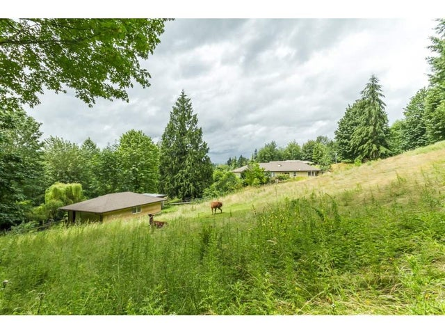4634 UDY ROAD - Sumas Mountain House with Acreage for sale, 6 Bedrooms (R2089684) #17