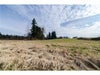 # LT.A 102B AV - Walnut Grove Land for sale(F1428723) #4